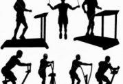 با فعالیت بدنی چاق شوید