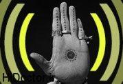 شیوه فکر کردن شما با طول انگشتان  چه ارتباطی دارد