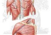 گر گرفتگی در خانم ها و خطر مشکلات قلبی در آنها
