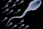 برای افزایش تعداد اسپرم این 7 شیوه را بدانید