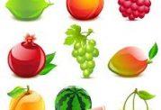 برای کاهش وزن مناسب ترین سبزیجات کم کربوهیدارت  کدامند
