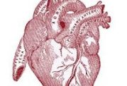 استرس مهمترین دلیل تپش قلب