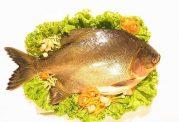 علت ایجاد احساس تهوع پس از خوردن ماهی