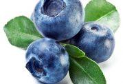 میوه بنفش و آبی یا میوه جوانی!