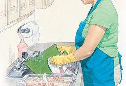 باکتری کمپیلو مهلک ترین باکتری آشپزخانه