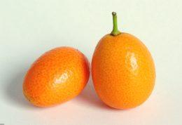 چه میزان درباره این میوه اطلاع دارید