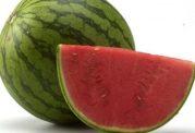 مصنوعی بودن سرخی هندوانه ها تایید شد