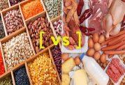 کربوهیدرات ها در مقابل پروتئین برای کاهش وزن