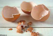 معجون پوسته تخم مرغ برای رفع پوکی استخوان