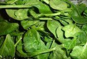 مناسبترین سبزی برای روزه داران دیابتی