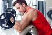 تمرينات دايره ای در ورزش چگونه باید باشد