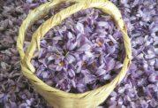 زعفران برای تازه مادرها