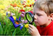 به کنجکاوی کودک اهمیت دهید
