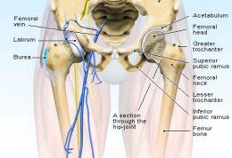 از درد این ناحیه از پا به راحتی نگذرید