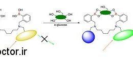 در سیستم مانیتورینگ مداوم قندخون(CGM) از نشانگر رنگ استفاده می شود