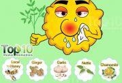 داروهای خانگی برای تب یونجه