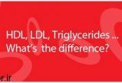کلسترول خوب (HDL)  با  کلسترول بد (LDL) چه فرقهایی دارد؟