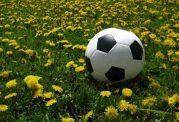 ارزیابی بعضی باورهای رایج در ورزش