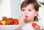 برای سلامت مغز کودک این غذاهای خارق العاده معجزه میکند