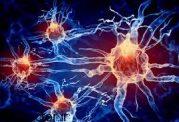 آثار مخرب این دارو بر سلول های مغز