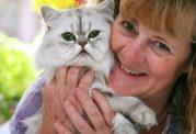 تحریک سیستم ایمنی بدن با چنگ گربه