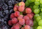 انگور ناجی بیماریهای کبد و کلیه