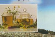 سلامتی با گیاهان را در این کتاب بجوئید