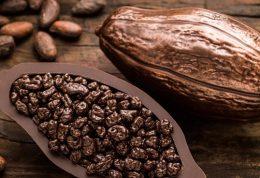 کاکائو و پیشگیری از زوال عقل