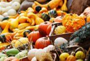 در پاییزهر روز از این ۸ ماده غذایی بخورید