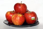 درمان همه دردها با سیب!