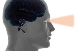 ارتباط شگفت انگیز مغز و بینایی (چشم)