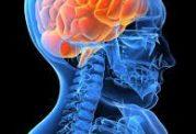 اعتیاد مغز و عوامل محرک آن
