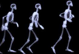 چه نوع لبنیاتی استخوان را تقویت میکند