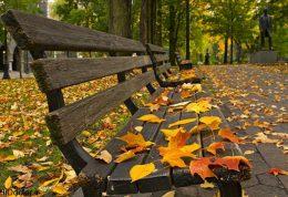 عکس هایی از زیبایی های فصل پاییز