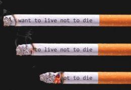 و باز هم سیگار!