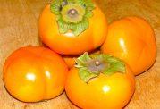 میوه پائیزی ضد چربی خون