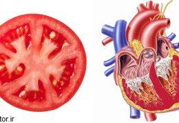 دانه های گوجه فرنگی چه فایده هایی دارد؟