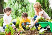 تقویت سلامت و هوش کودک با باغبانی