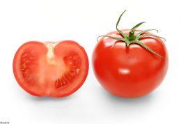 این روزها با معضل گوجه فرنگی