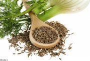 مصارف پزشکی مفید گیاه رازیانه