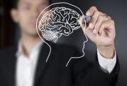 8 چیزی که در مورد مغزتان نمی دانید