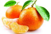 نارنگی یک میوه پر خاصیت