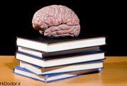 فعالیت های ذهنی تان را افزایش دهید