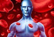 برای بهبود گردش خون چه بخوریم
