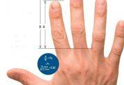 اسراری از طول انگشتان دست