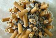 سیگار با این عضو مهم بدن چه می کند؟