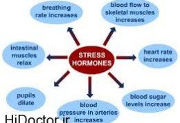 تاثیرات مخرب جسمانی استرس