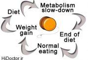 منظور از چرخه وزن چیست؟