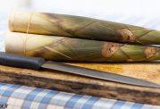10 فایده ساقه بامبو برای سلامتی