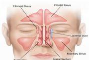 پاک شدن سیستم تنفسی